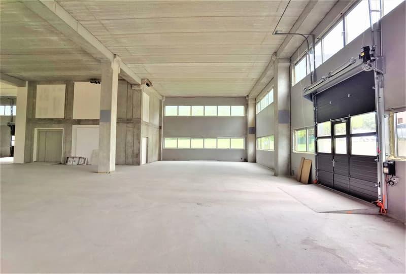 Nuovo capannone industriale moderno in fase di ultimazione per magazzino/laboratorio/uffici/showroom (2)