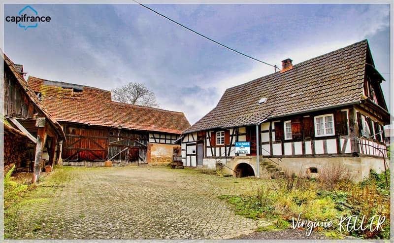 Dpt Bas-Rhin (67), à vendre DRACHENBRONN BIRLENBACH Corps de ferme (1)