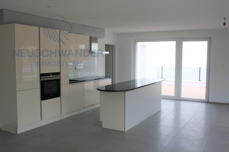 Appartement  130 m2 - terrasse panoramique 150 m2 (2)