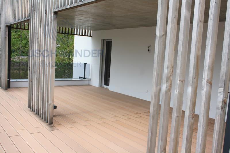 Appartement  130 m2 - terrasse panoramique 150 m2 (8)