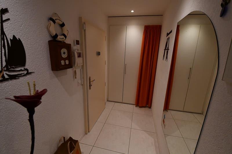 Bel appartement lumineux avec belle terrasse de 34m2 (2)