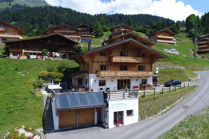 Grand chalet, vue panoramique, possibilité 3 logements (2)