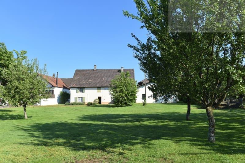 Grande maison familiale avec une parcelle arborisée de 2000 m2. (2)