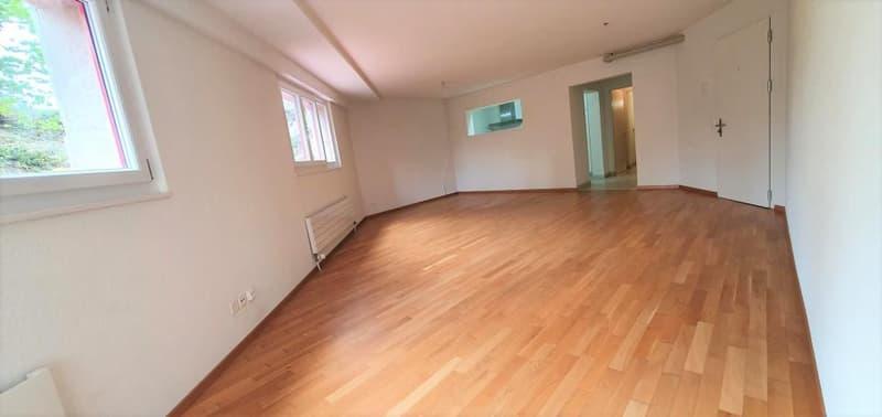 Spacieux appartement de 2.5 pièces (1)