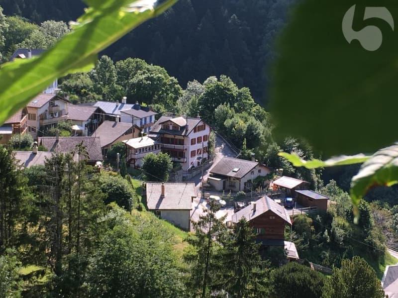 3.5 pces style chalet pour amoureux de la montagne (2)