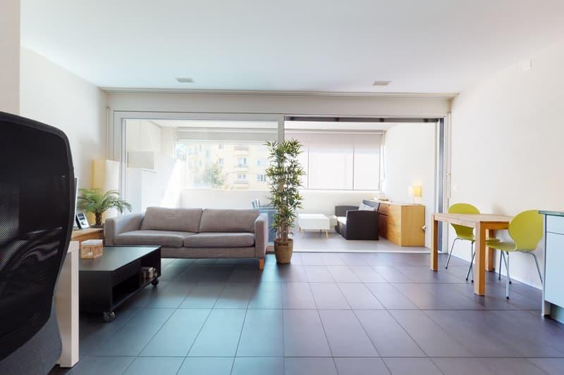 Magnifique appartement MINERGIE au centre de Bienne (1)