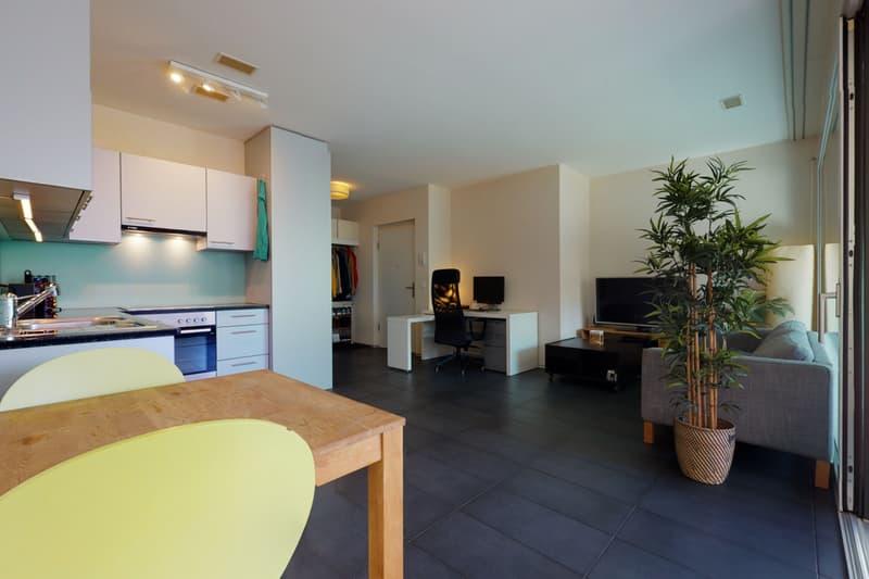 Magnifique appartement MINERGIE au centre de Bienne (2)