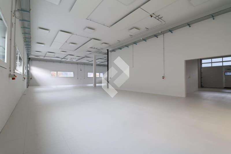 Halle industrielle de 225 m2 en béton armé au 1er étage ! (13)