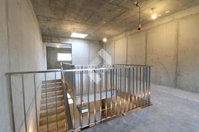 Box industriel de 160 m2 en béton armé avec portes de garages ! (13)