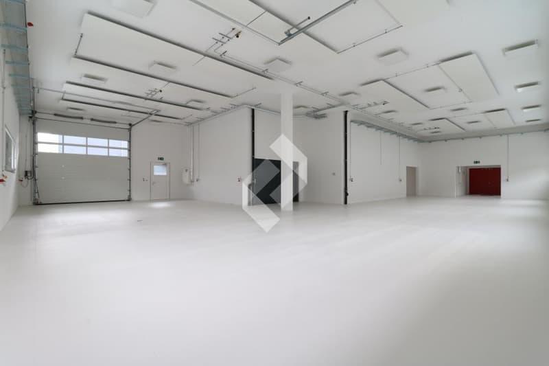Box industriel de 184 m2 en béton armé avec portes de garages ! (13)