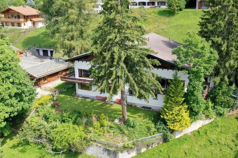 Doppeleinfamilienhaus CHESA LAVADINA (2)