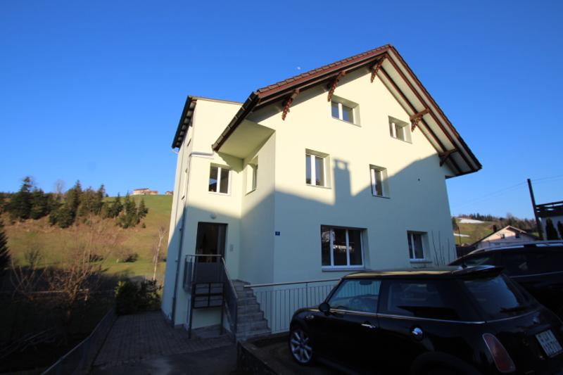 Zu verkaufen: Renoviertes MFH in Luthern (1)