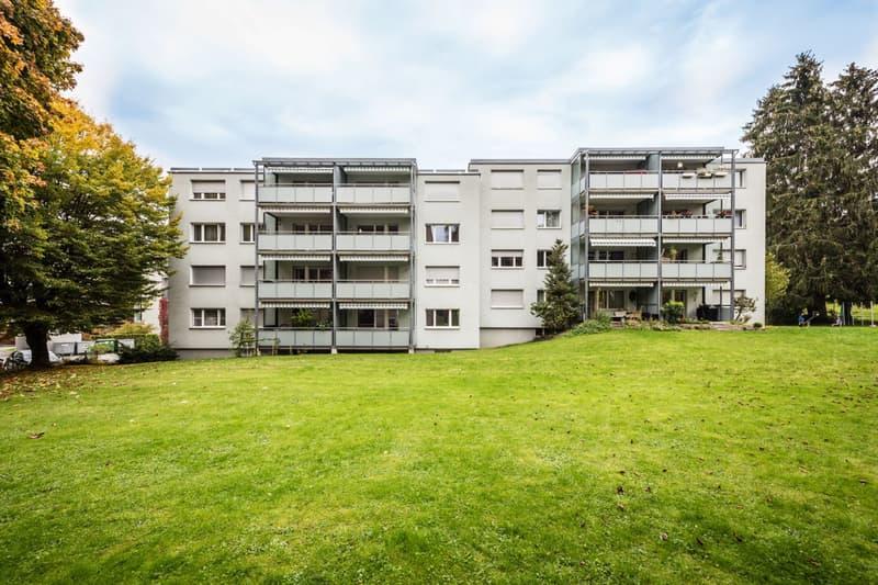 gemütliche 3.5 Zimmer-Wohnung (1)