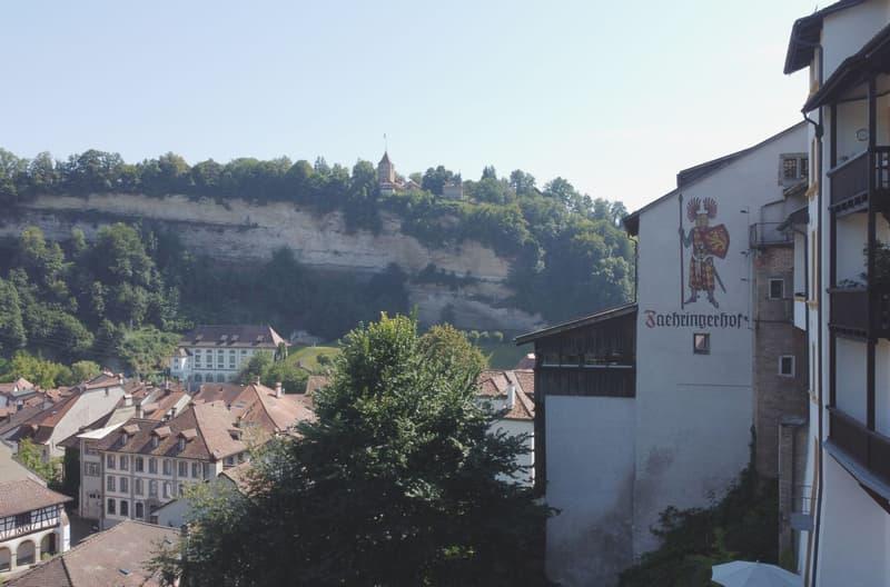 Eine einmalige Chance im Herzen von Freiburg (12)