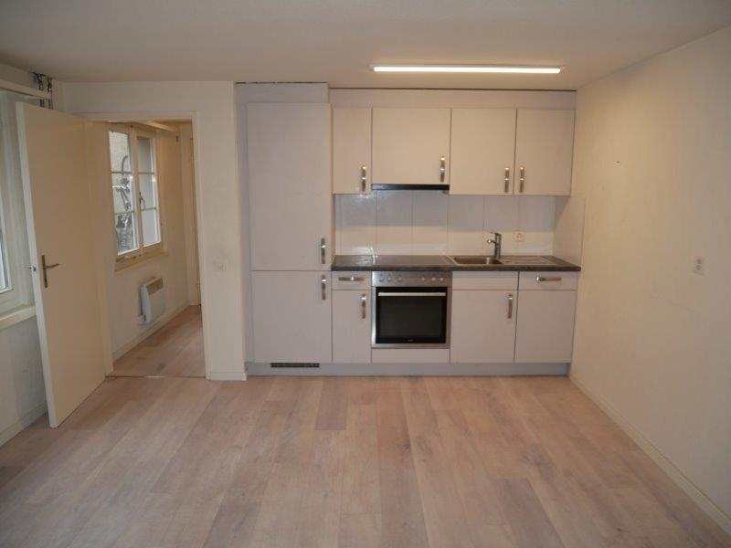 Renovierte 1.5-Zimmer-Wohnung im Grünen zu vermieten! (5)