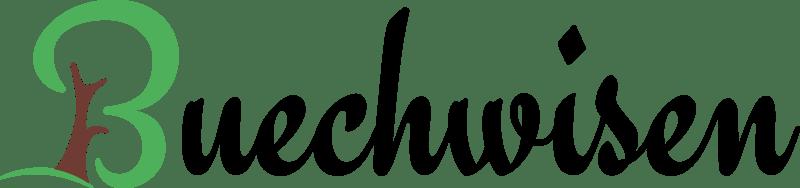 Neubau Buechwisen 3.5 Zimmer Eigentumswohnungen Kopie (6)