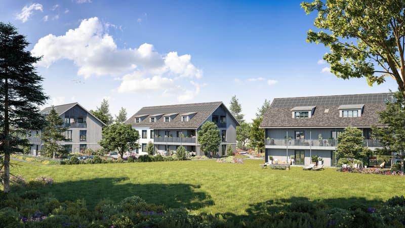 Neubau Buechwisen 2.5 Zimmer Eigentumswohnungen (1)