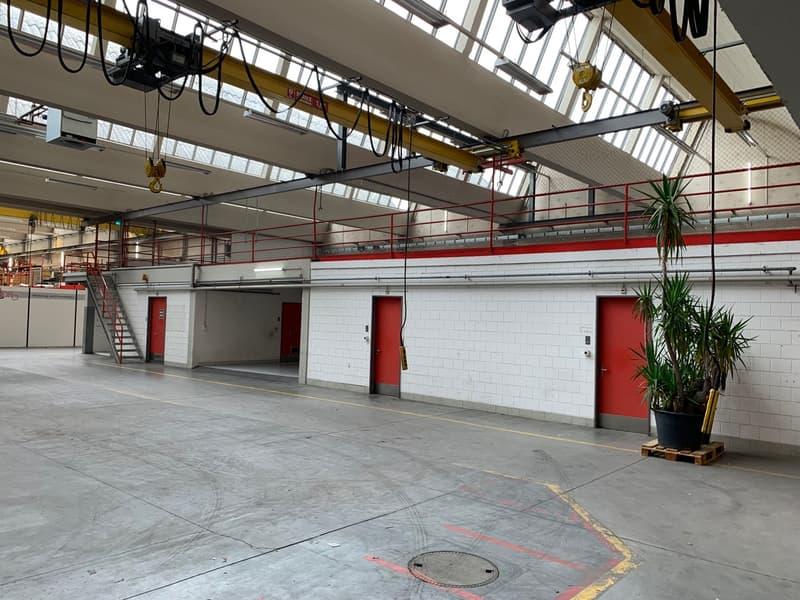 Verkaufs- und Gewerbefläche direkt am Jumbo-Parkplatz im Herzen von Arbon (3)