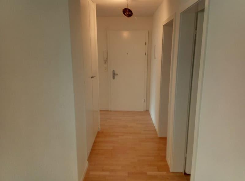 neu renovierte 5 1/2-Zimmerwohnung im Parterre (1)