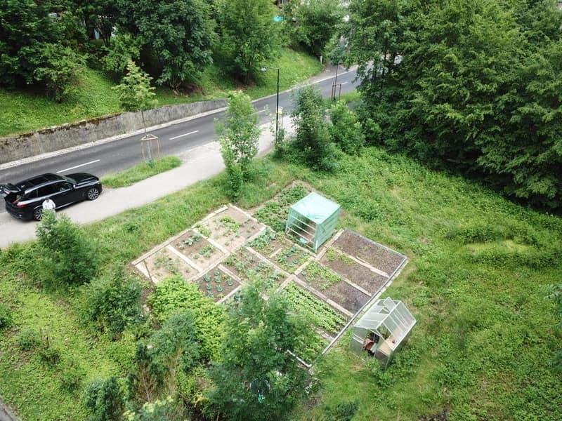 Voll erschlossenes Bauland in Bretzwil BL (2)