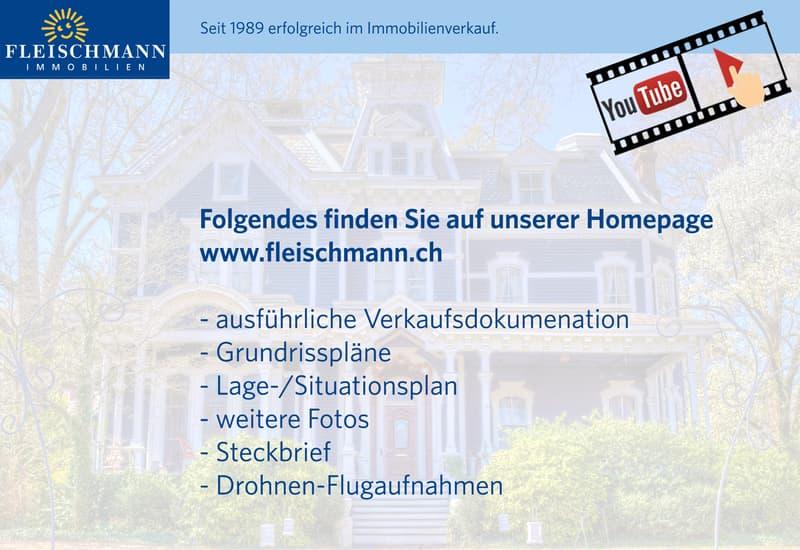 Historisches Mehrfamilienhaus am wunderschönen Unterseeufer (13)