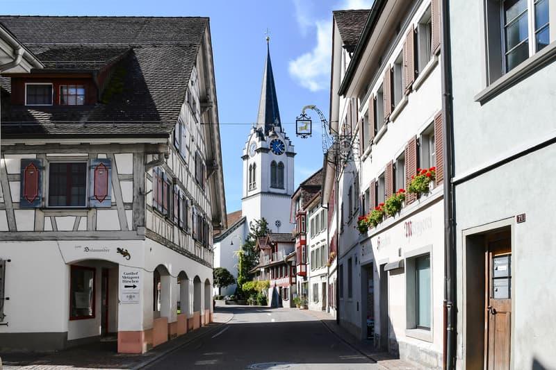 Historisches Mehrfamilienhaus am wunderschönen Unterseeufer (2)