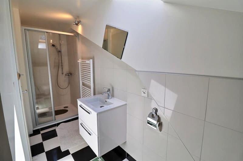 Magnifique maison locative de 5 appartements idéale pour y habiter et louer des appartements ou comme bâtiment à rendement (13)