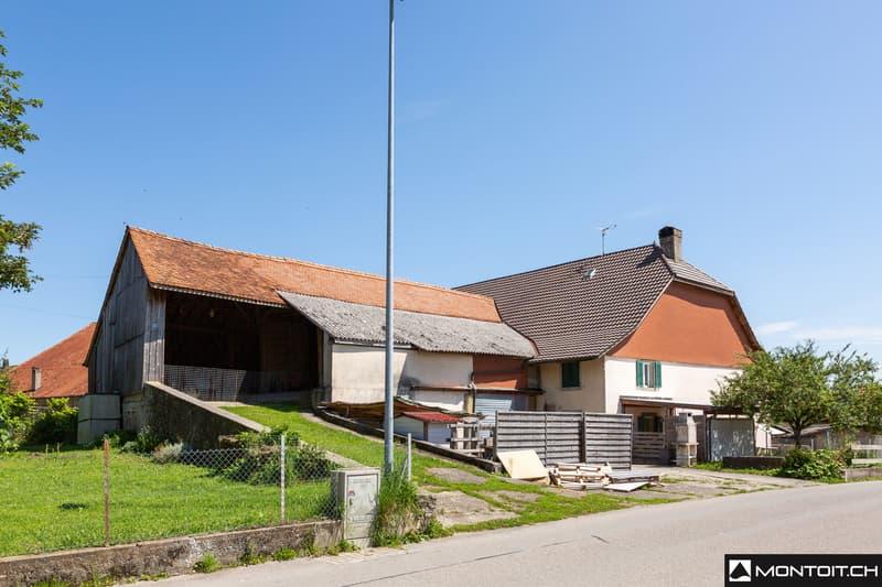Montbrelloz, à vendre, belle ferme à rénover en appartements. (1)