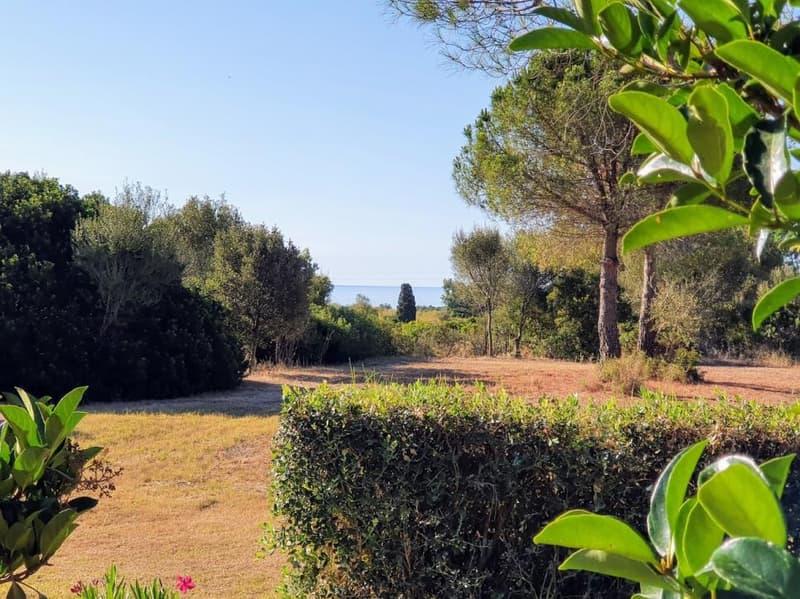 Mesonette romatique à quelques mètres (13)