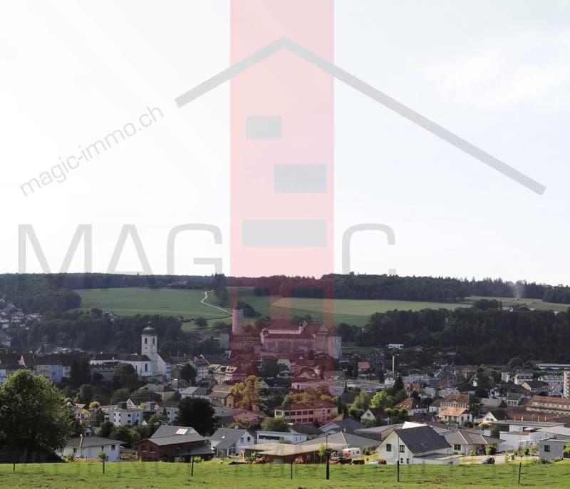 Différents immeubles à vendre à Porrentruy. (3)