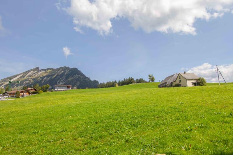 2-Familienhaus an sonniger Lage im Arvenbüel (keine Zweitwohnungen) (2)