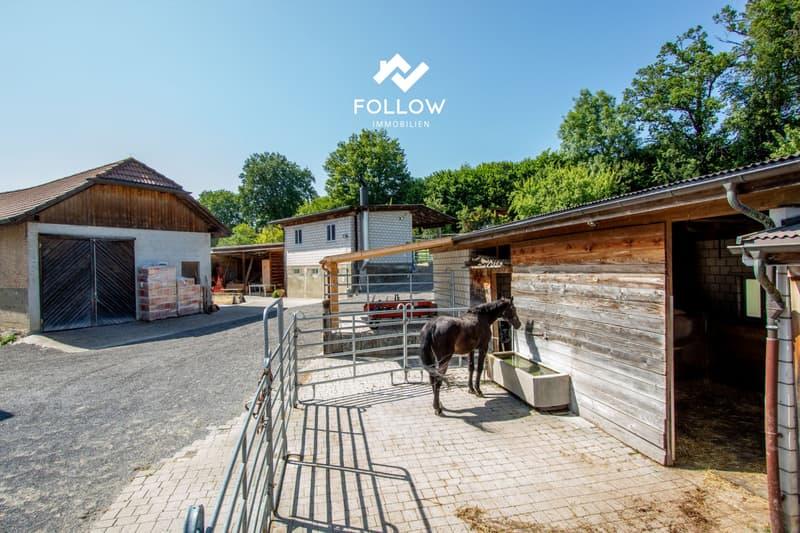 Pferdesportanlage mit Mehrfamilienhaus (13)