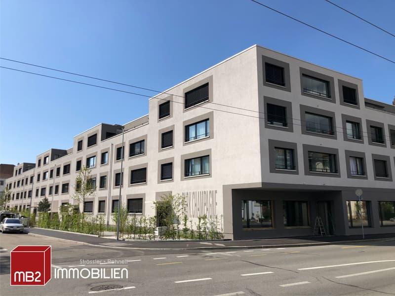 Helle, moderne 4.5-Zimmerwohnung im 1. Obergeschoss (1)