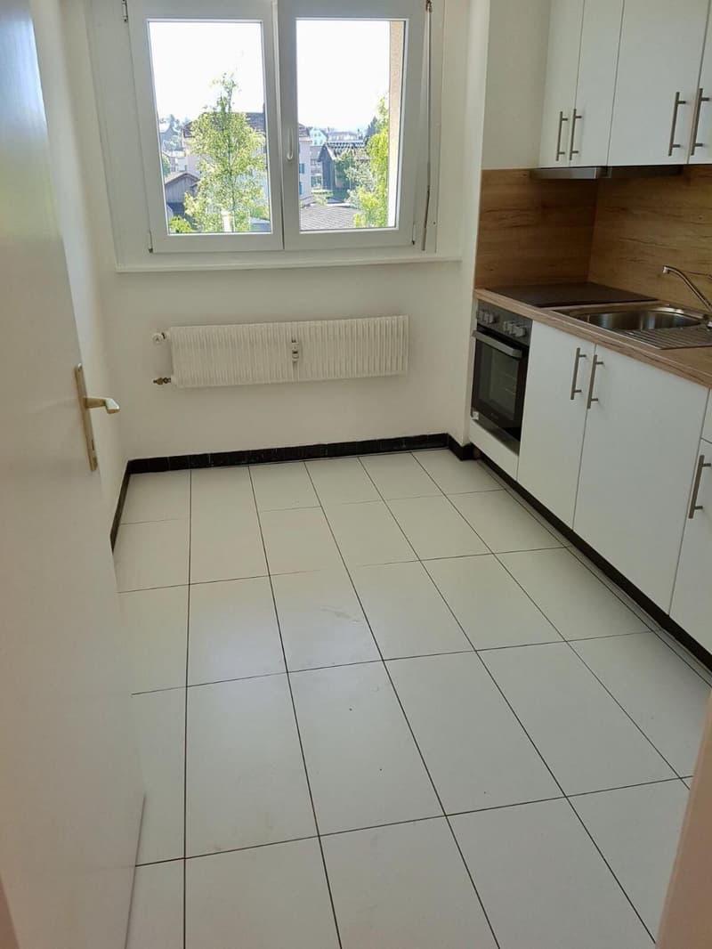 Appartement totalement rénové de 4.5 pièces (2)