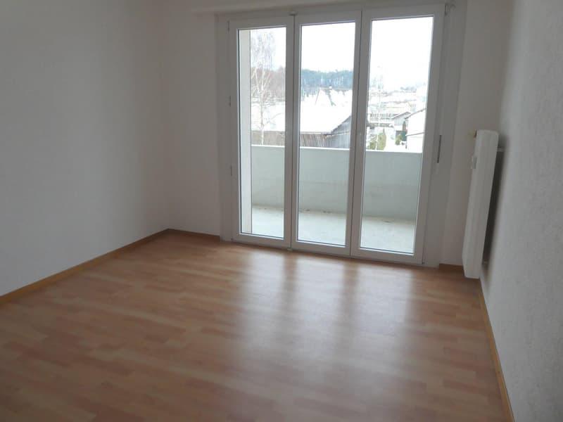 Appartement totalement rénové de 4.5 pièces (6)