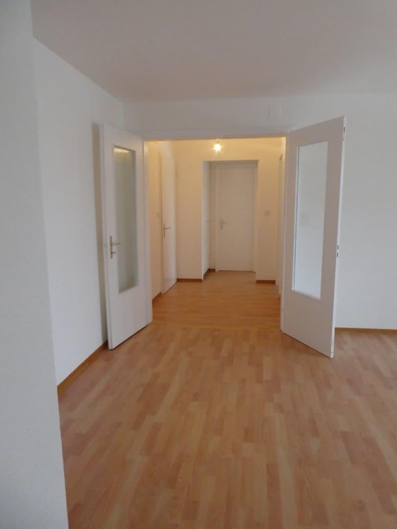 Appartement totalement rénové de 4.5 pièces (1)