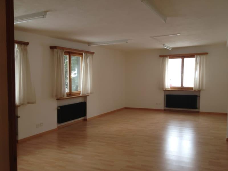 Büro/Atelier an wunderschöner ruhiger und sonniger Lage in Sils im Engadin (2)