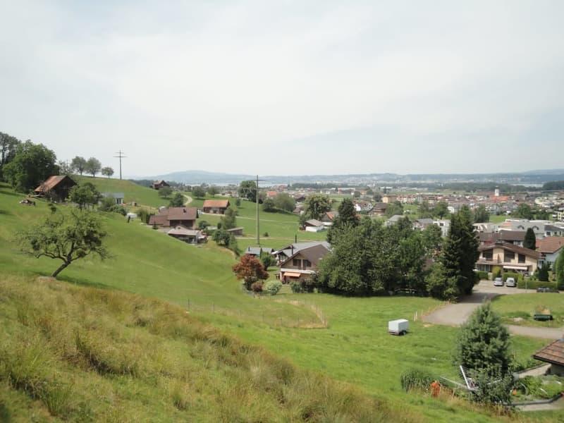 Traumhafte Baulandparzelle über dem Zürichsee (2)