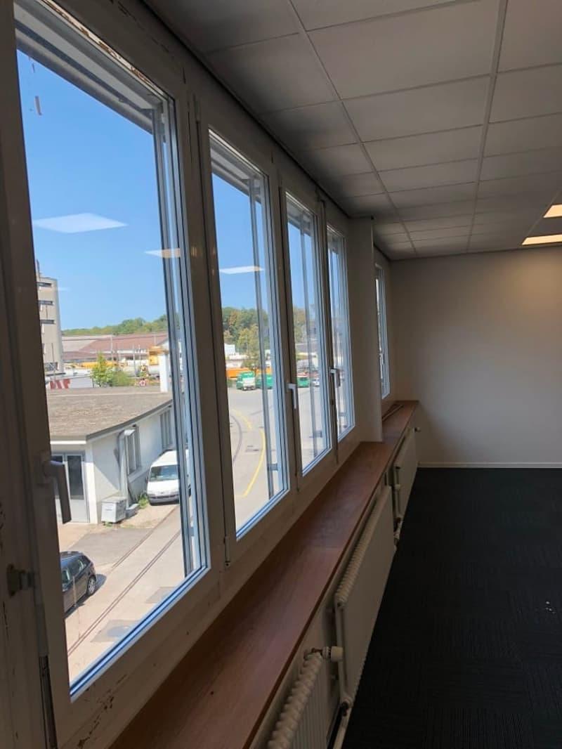 Neu renovierte, helle Büroräumlichkeiten - ideal für Startup (2)