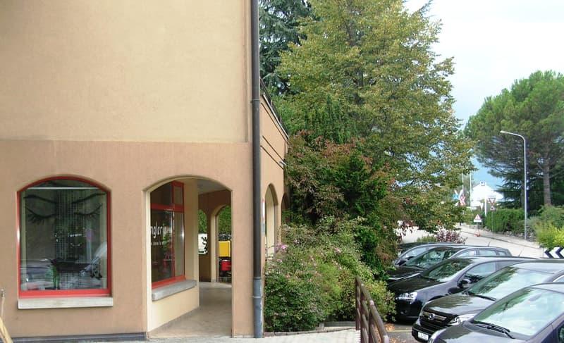 Eysins s/Nyon - Commerce - Bureau - Cabinet - Centre village (13)