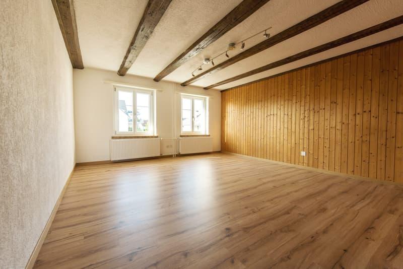 Schöne 1.5 Zi. Wohnung in Grüningen zu vermieten (1)