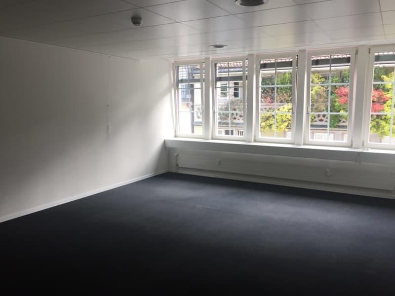 Repräsentatives klimatisiertes Büro an Toplage (Multergasse) (2)