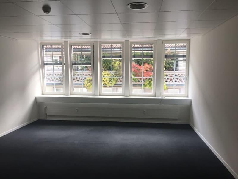 Repräsentatives klimatisiertes Büro an Toplage (Multergasse) (1)