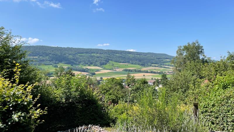 Bauland mit Weitsicht am Waldrand (1)