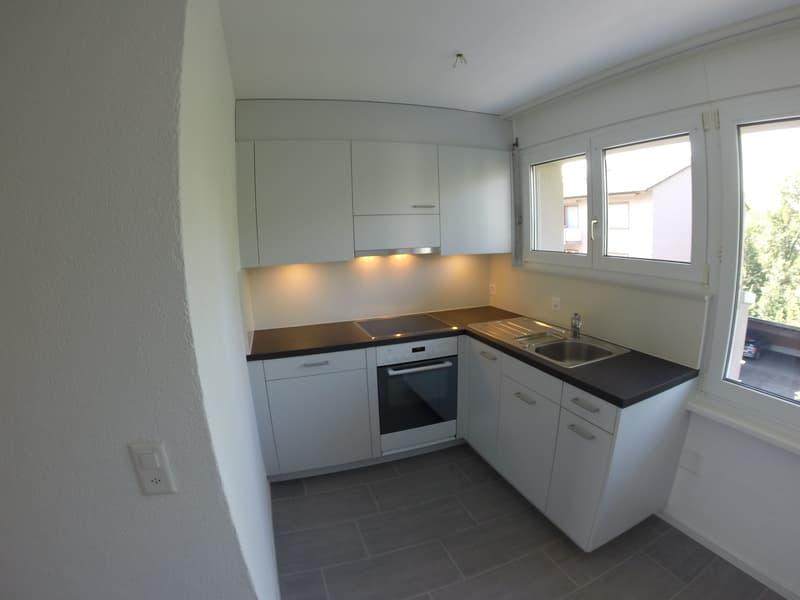 Helle, renovierte Wohnung mit Balkon und eigenem Gartensitzplatz (1)