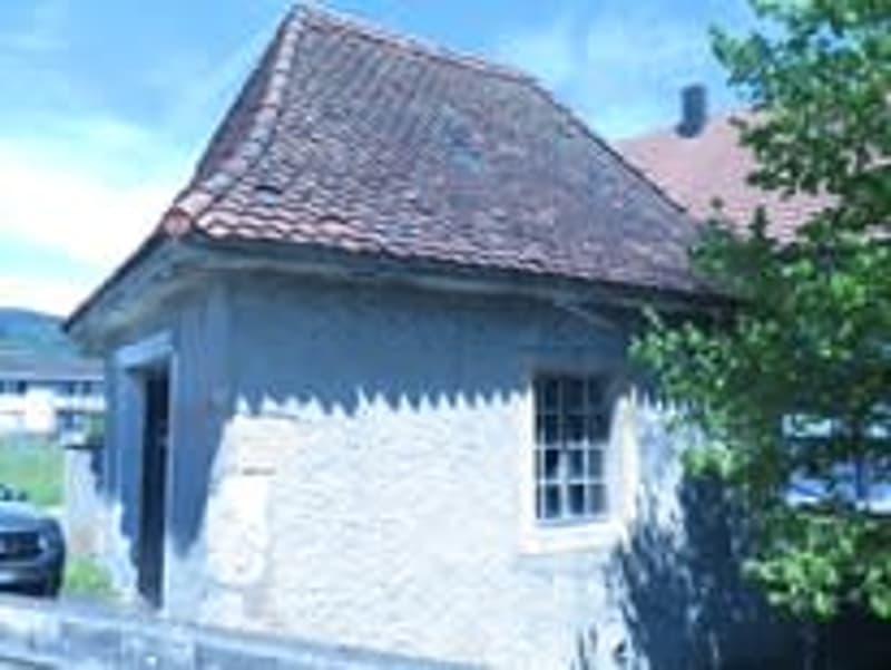 """Einzelgarage """"Buchhüsli"""" in Härkingen (2)"""