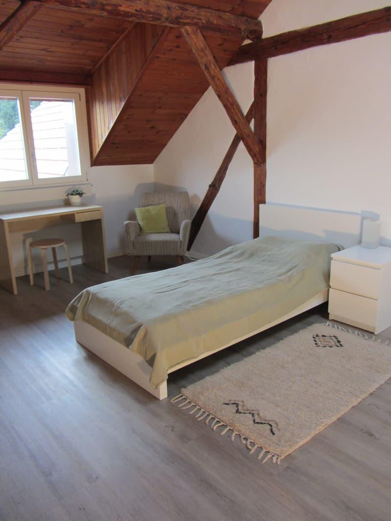 Möbliertes Zimmer / Wohngemeinschaft (3)
