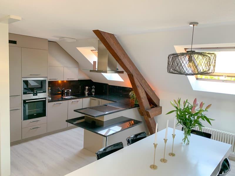 Duplex apartment in Lausanne (1)