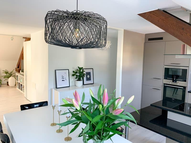 Duplex apartment in Lausanne (2)