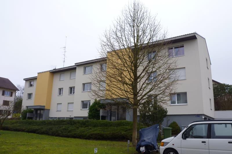 12 Familienhaus (jeweils 3 1/2 Zimmer-Wohnungen) in Kreuzlingen (1)